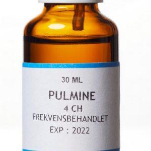 Pulmine - organmiddel lunder