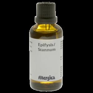 Epifysis Stannum